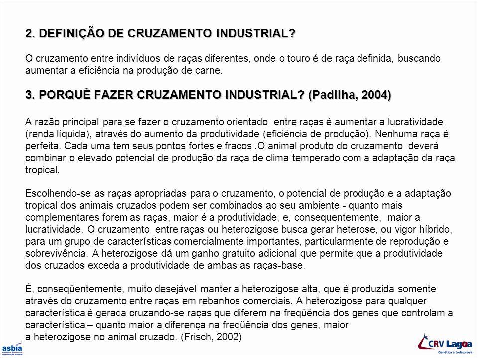 2. DEFINIÇÃO DE CRUZAMENTO INDUSTRIAL