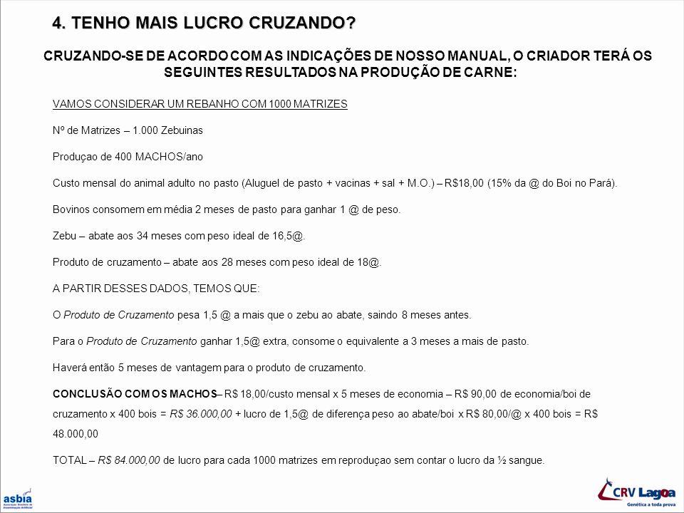 4. TENHO MAIS LUCRO CRUZANDO