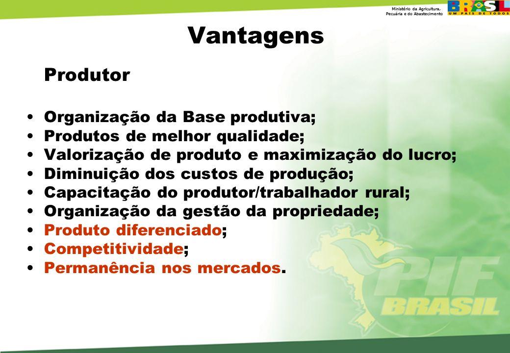 Vantagens Organização da Base produtiva; Produtos de melhor qualidade;