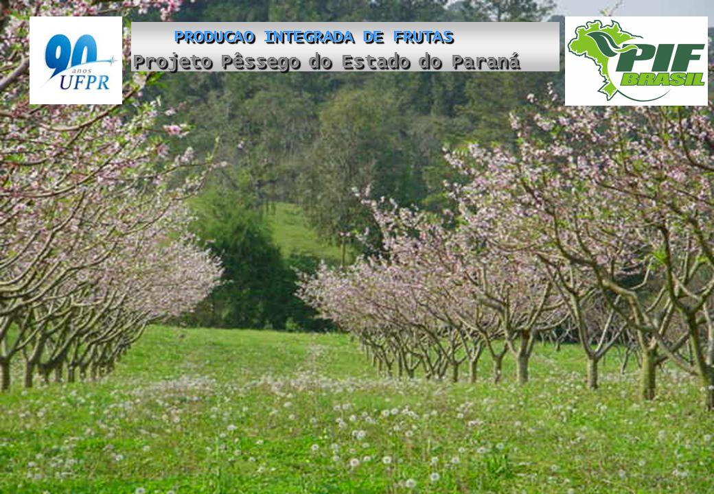 Projeto Pêssego do Estado do Paraná