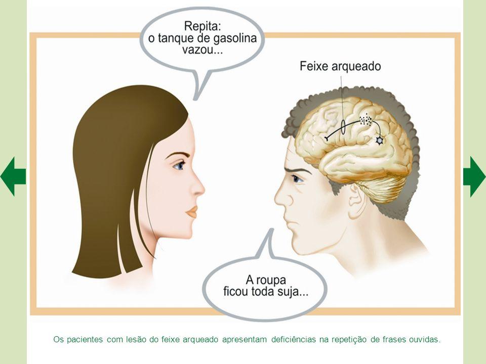 Os pacientes com lesão do feixe arqueado apresentam deficiências na repetição de frases ouvidas.