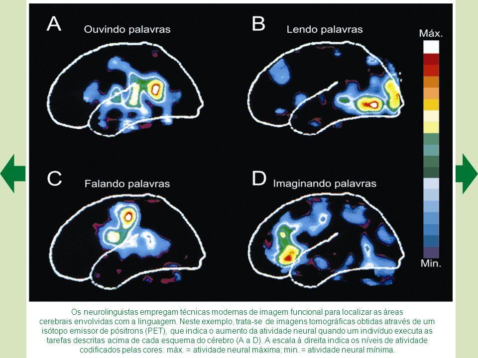 Os neurolinguistas empregam técnicas modernas de imagem funcional para localizar as áreas