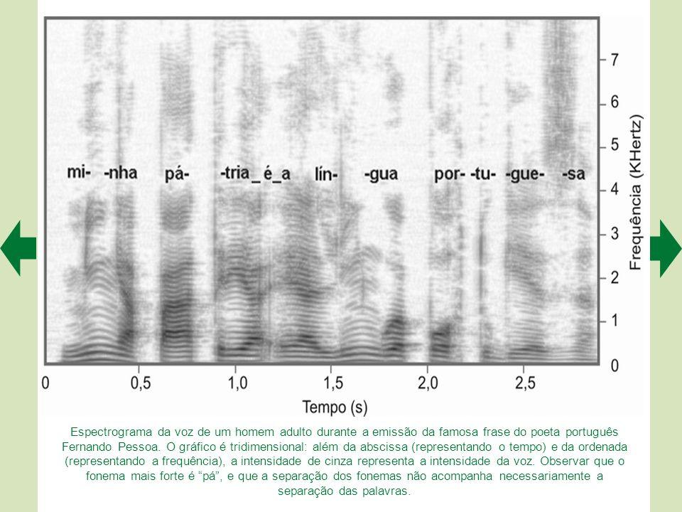 Espectrograma da voz de um homem adulto durante a emissão da famosa frase do poeta português Fernando Pessoa.