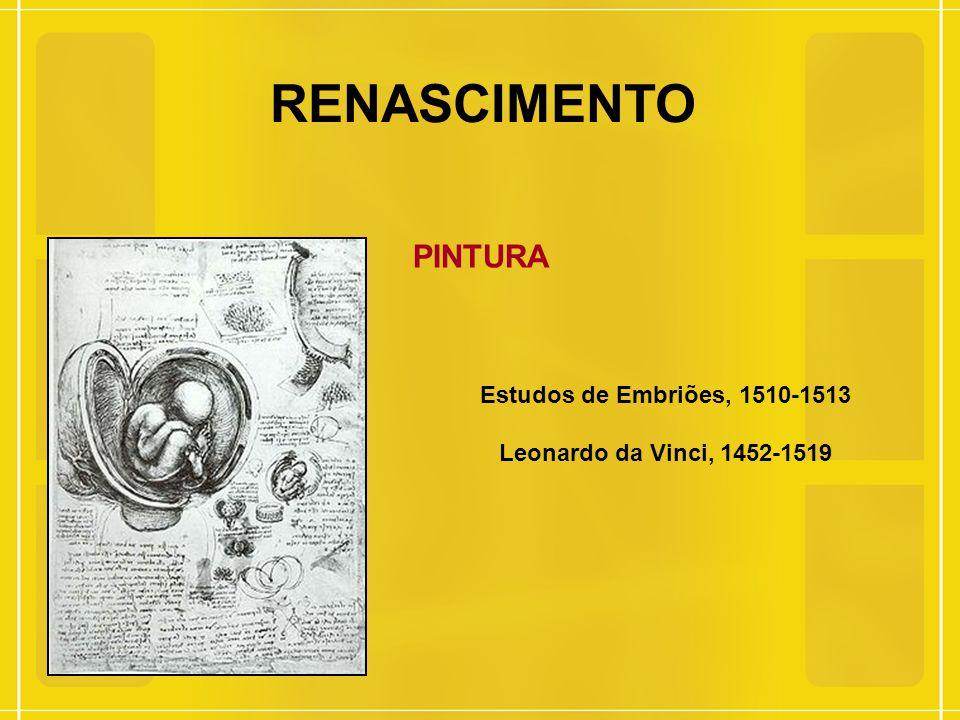 RENASCIMENTO PINTURA Estudos de Embriões, 1510-1513