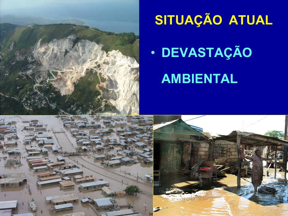 SITUAÇÃO ATUAL DEVASTAÇÃO AMBIENTAL
