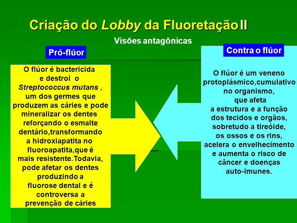 Criação do Lobby da Fluoretação II