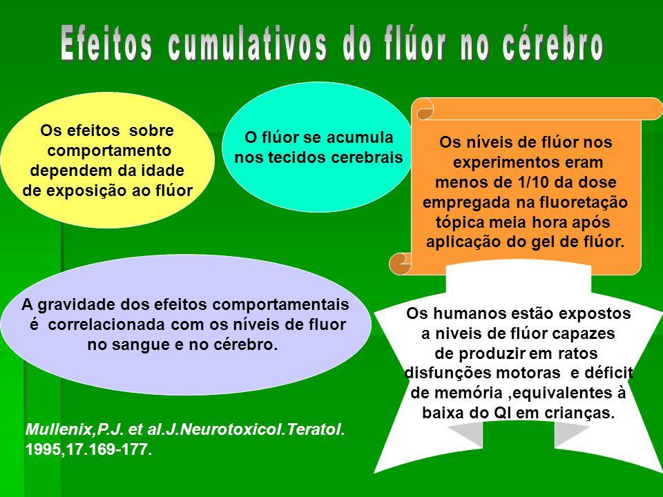 Efeitos cumulativos do flúor no cérebro