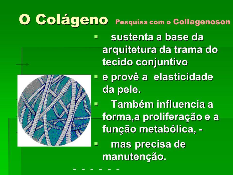 O Colágeno Pesquisa com o Collagenoson. sustenta a base da arquitetura da trama do tecido conjuntivo.