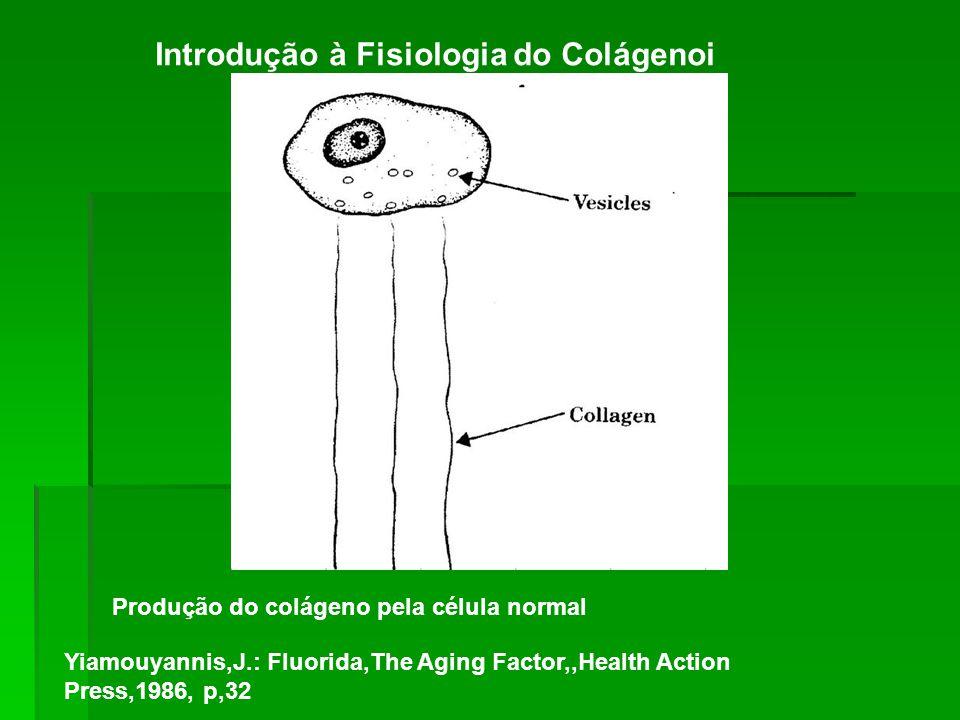 Introdução à Fisiologia do Colágenoi