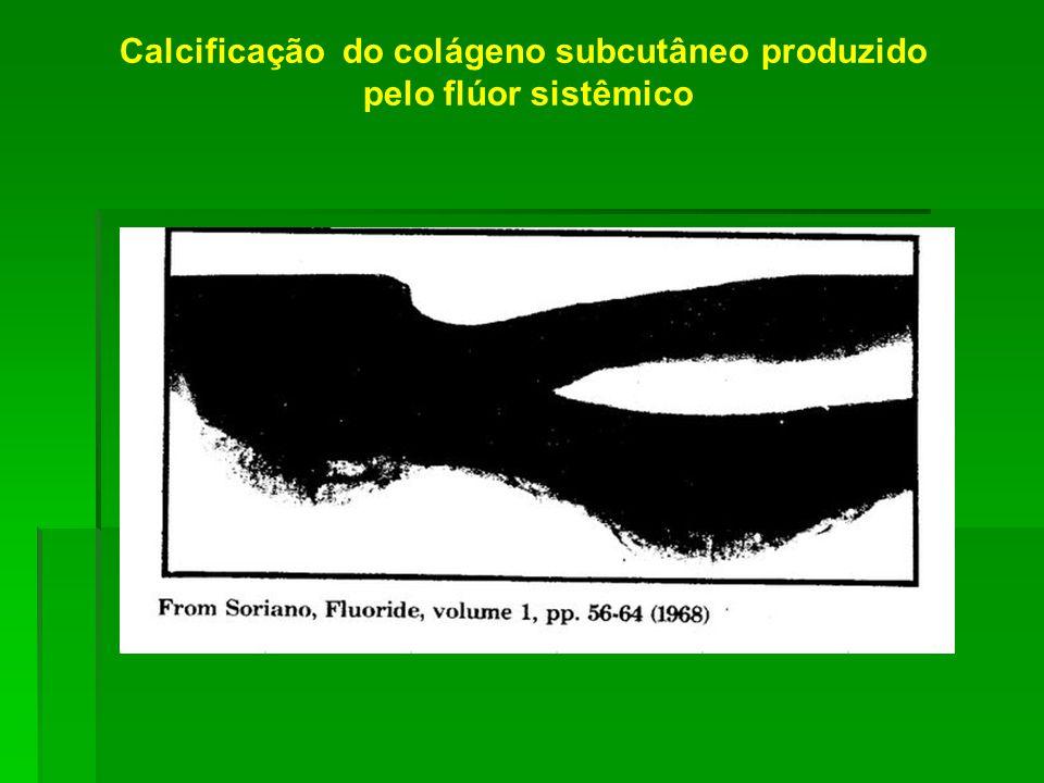Calcificação do colágeno subcutâneo produzido