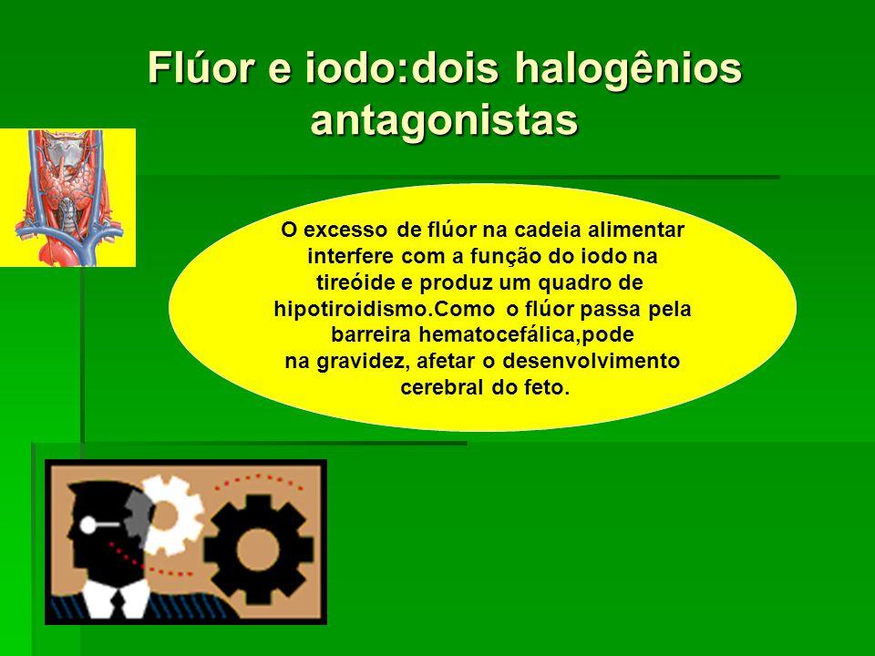 Flúor e iodo:dois halogênios antagonistas