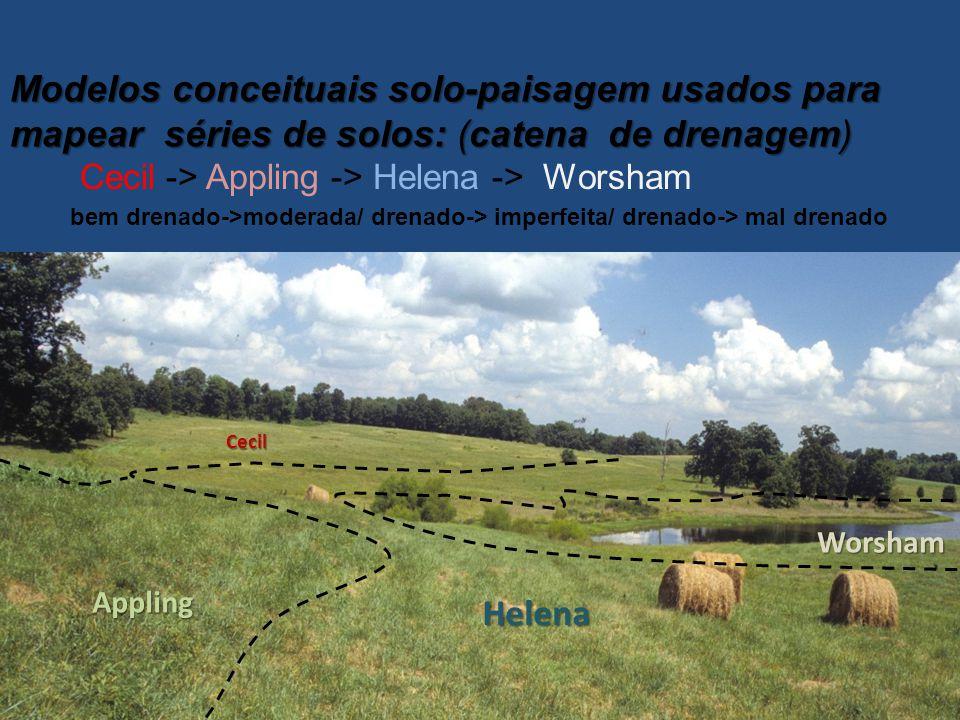 Modelos conceituais solo-paisagem usados para mapear séries de solos: (catena de drenagem)