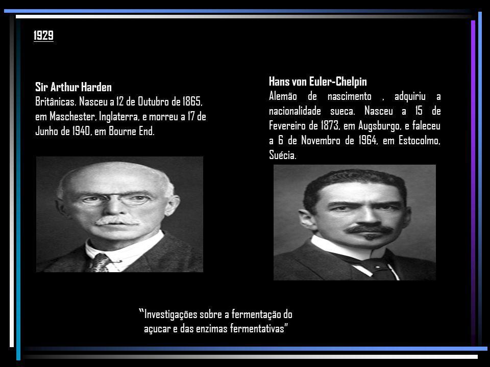 1929 Hans von Euler-Chelpin.