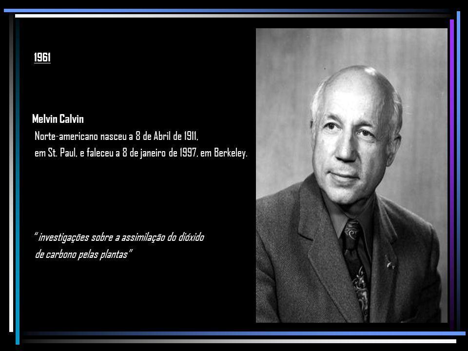 1961 Melvin Calvin. Norte-americano nasceu a 8 de Abril de 1911, em St. Paul, e faleceu a 8 de janeiro de 1997, em Berkeley.