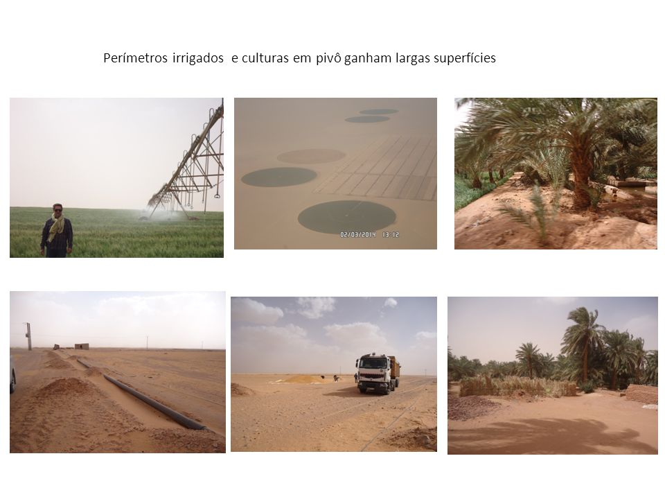 Perímetros irrigados e culturas em pivô ganham largas superfícies