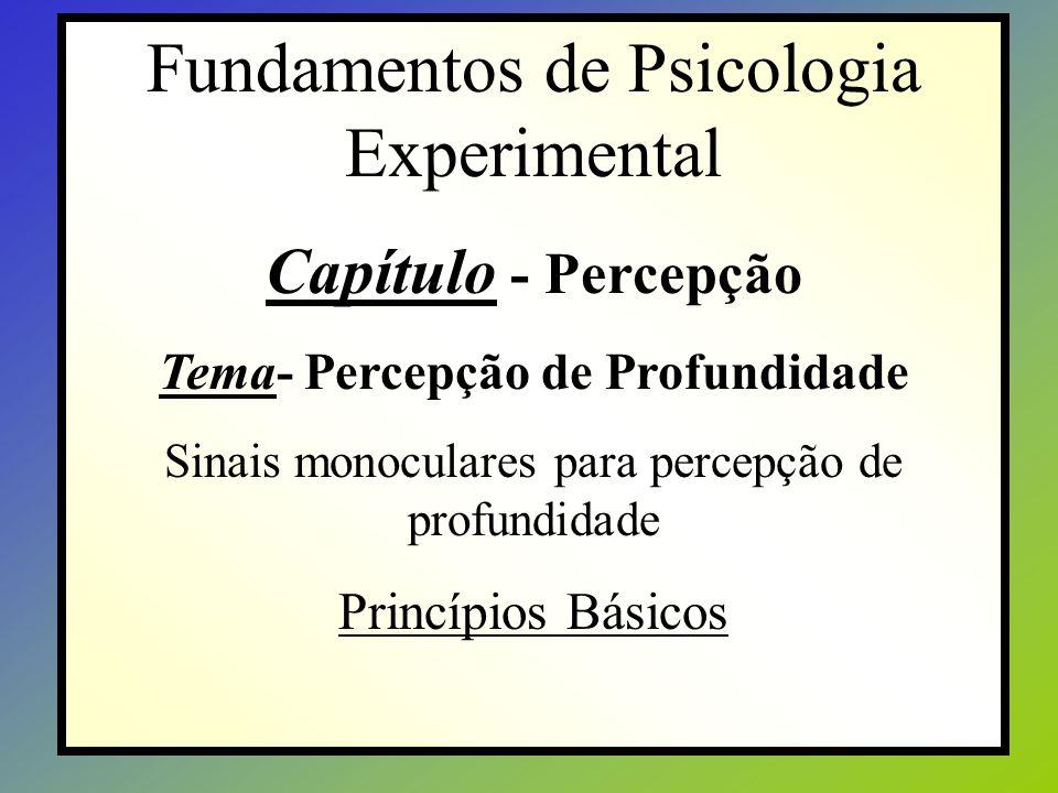 Fundamentos de Psicologia Experimental