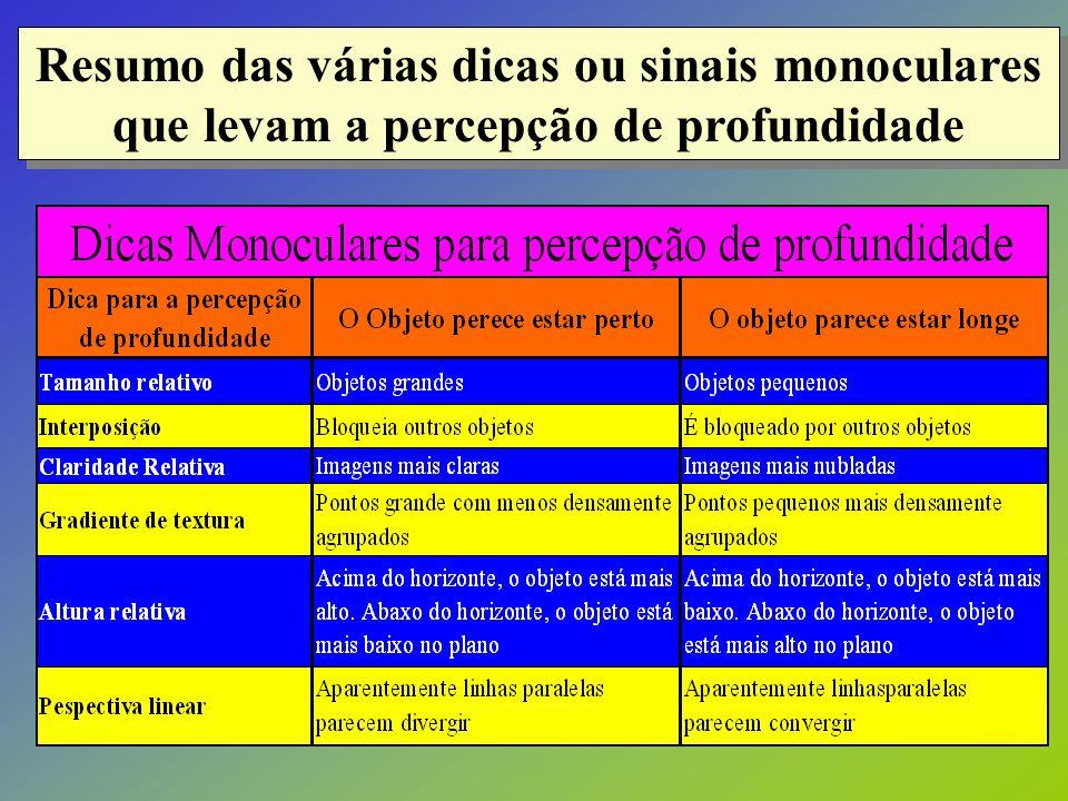Resumo das várias dicas ou sinais monoculares que levam a percepção de profundidade