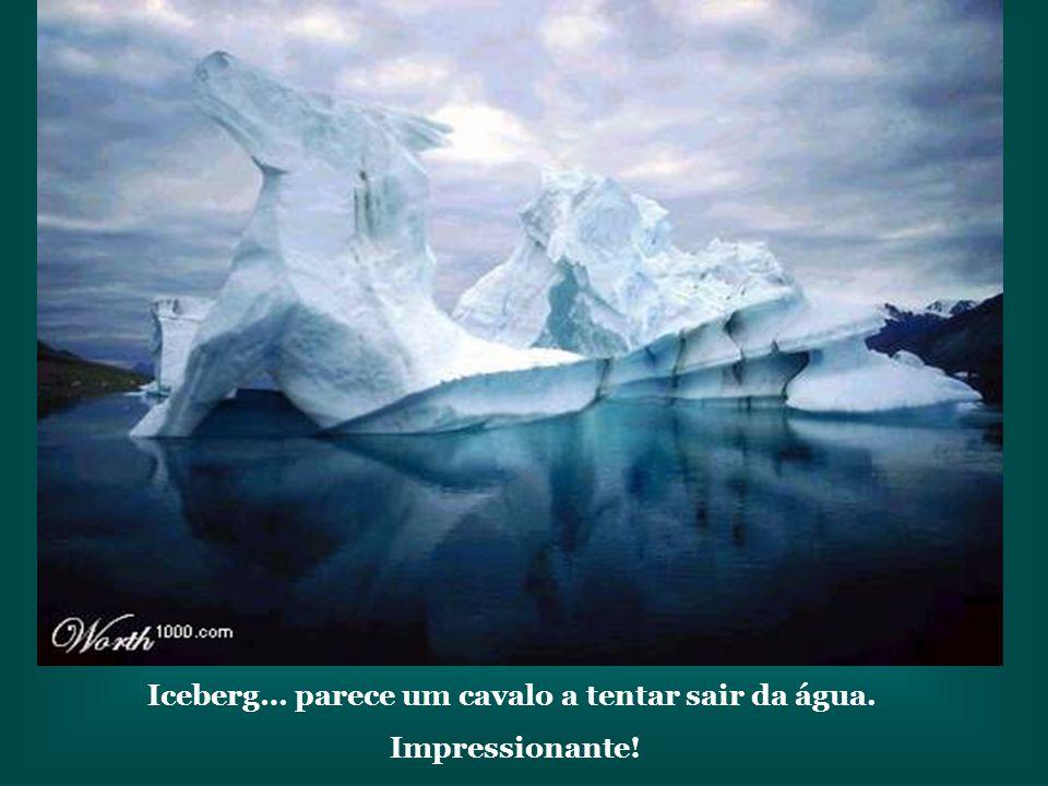 Iceberg… parece um cavalo a tentar sair da água.