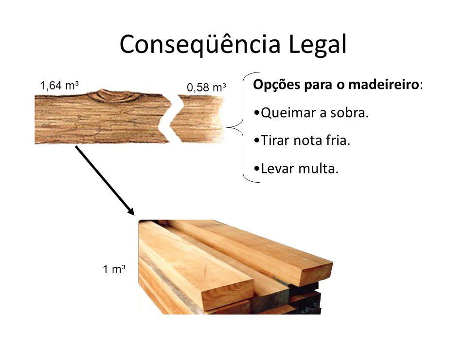 Conseqüência Legal Opções para o madeireiro: Queimar a sobra.