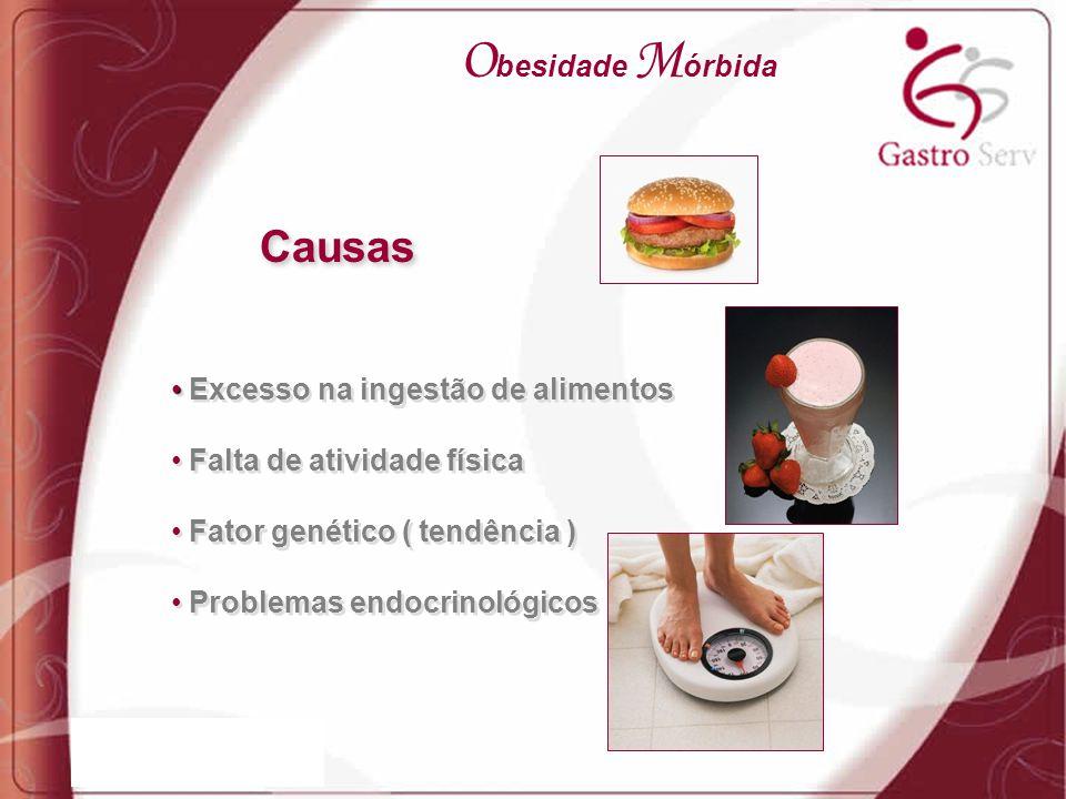 Obesidade Mórbida Causas Excesso na ingestão de alimentos