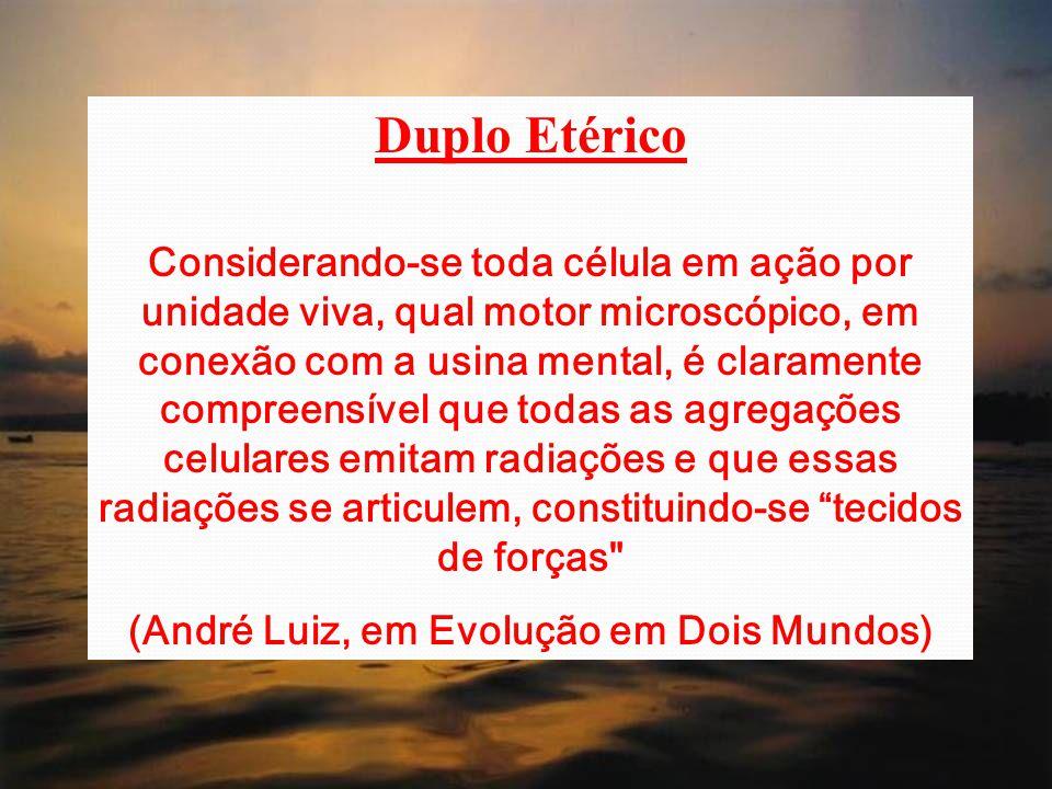 (André Luiz, em Evolução em Dois Mundos)