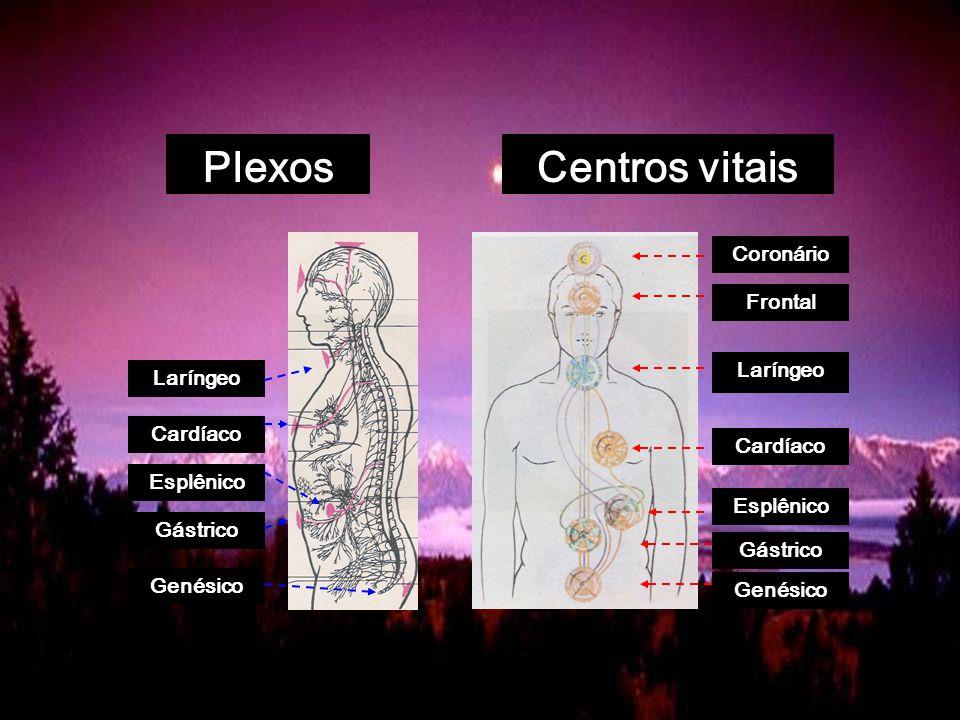 Plexos Centros vitais Coronário Frontal Laríngeo Laríngeo Cardíaco