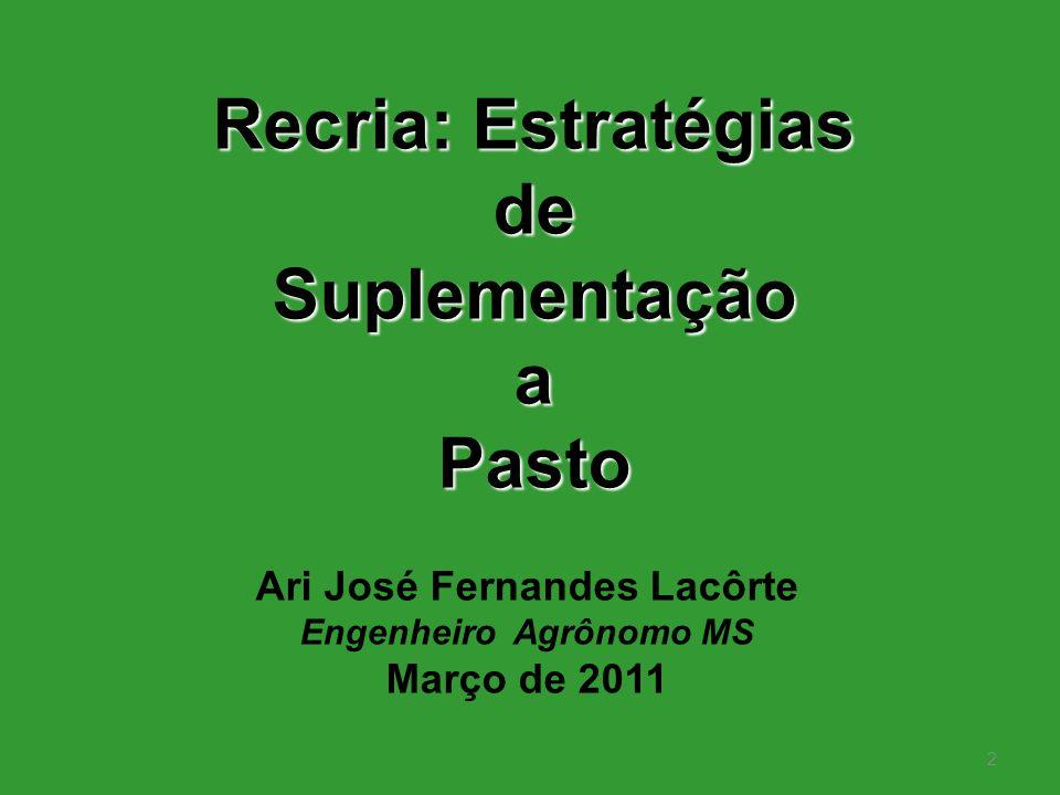 Ari José Fernandes Lacôrte Engenheiro Agrônomo MS