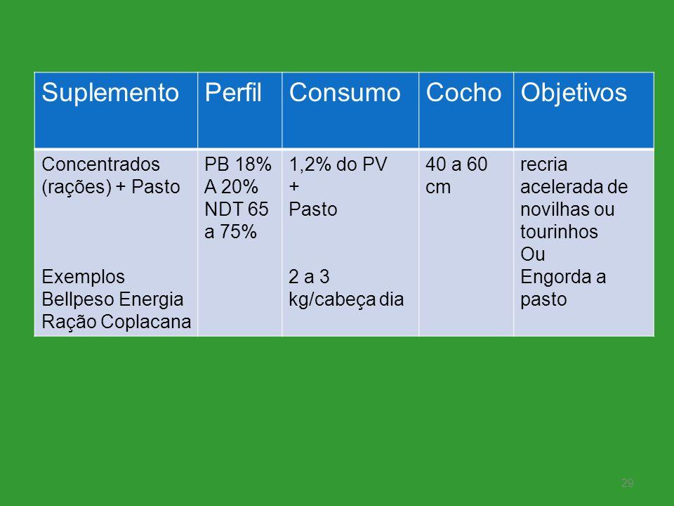 Suplemento Perfil Consumo Cocho Objetivos Concentrados