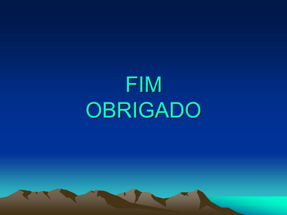 FIM OBRIGADO
