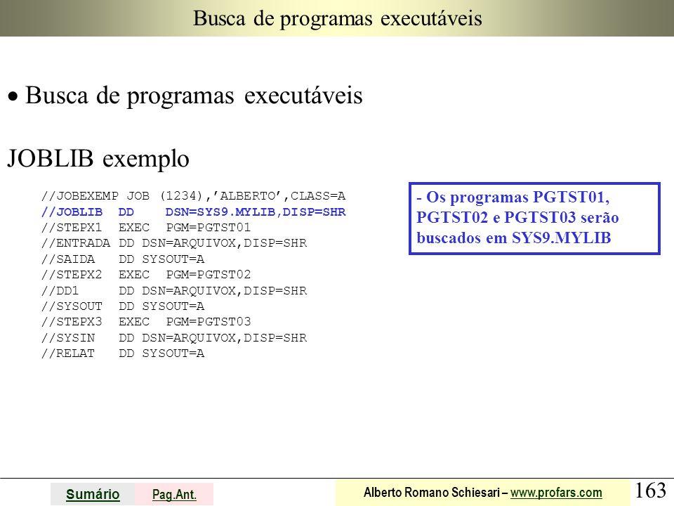 Busca de programas executáveis