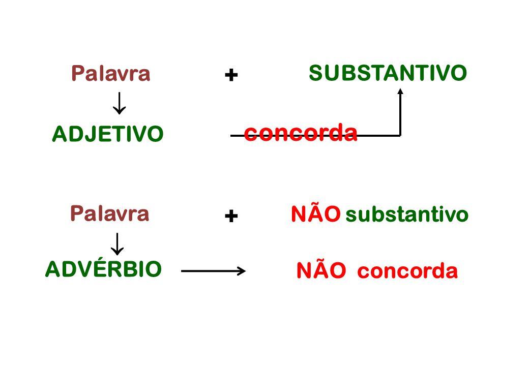 +  concorda +  SUBSTANTIVO ADJETIVO Palavra NÃO substantivo ADVÉRBIO
