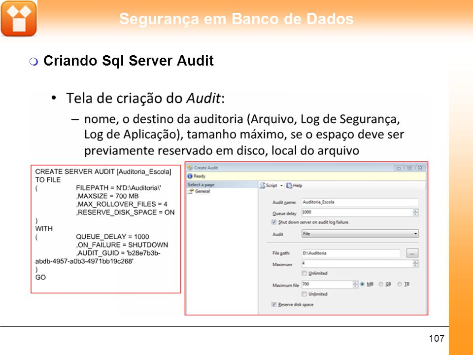 Criando Sql Server Audit