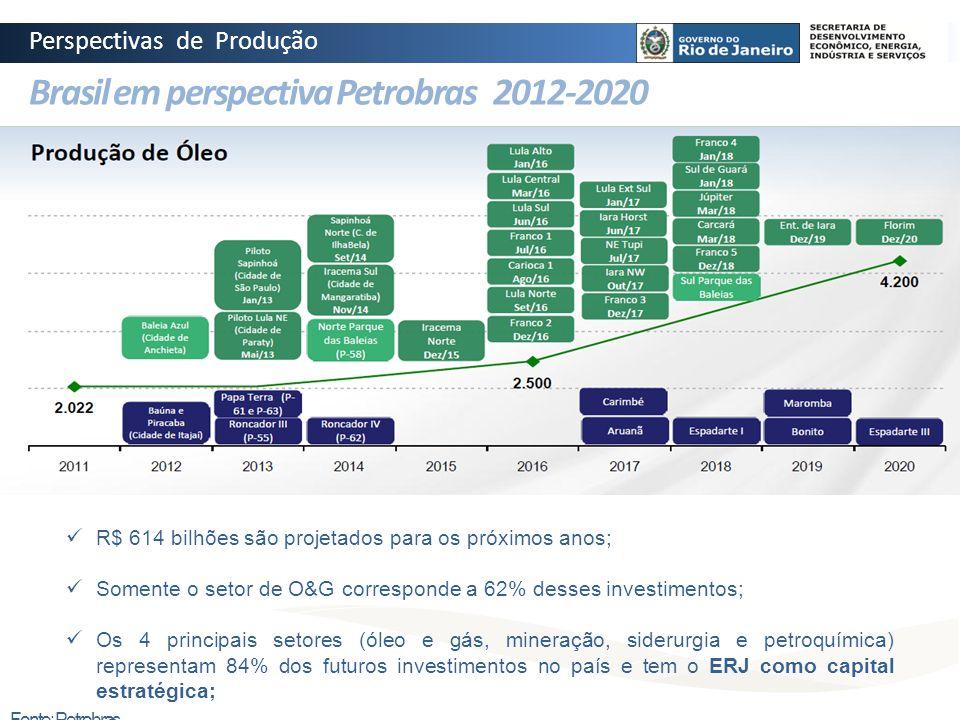 Brasil em perspectiva Petrobras 2012-2020