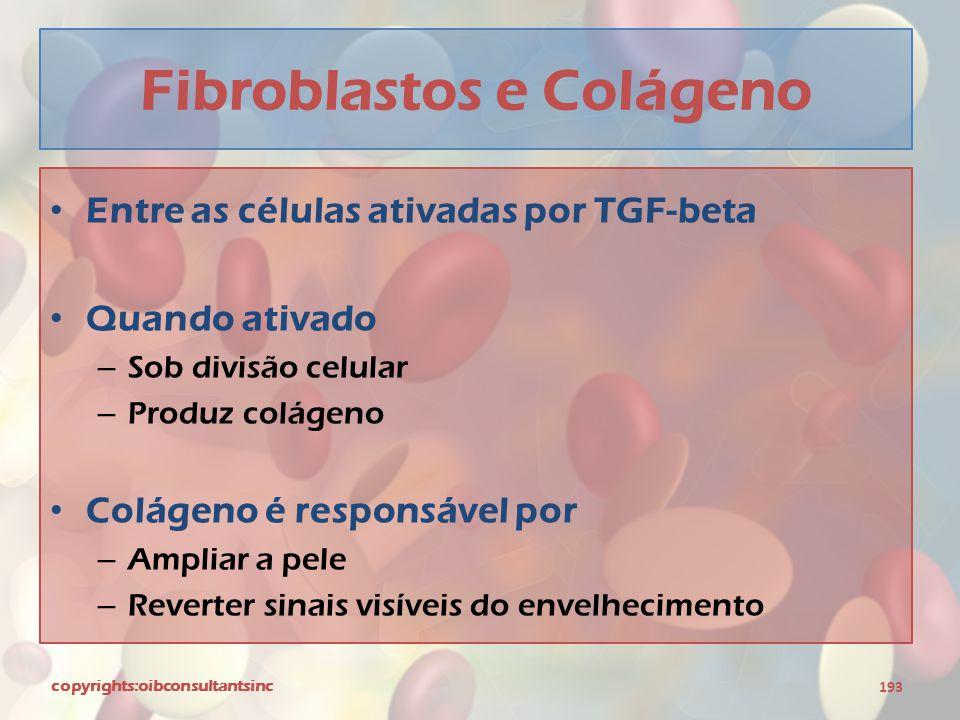 Fibroblastos e Colágeno