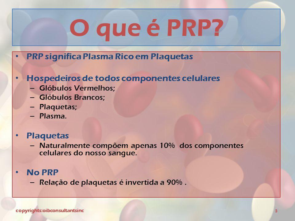 O que é PRP PRP significa Plasma Rico em Plaquetas