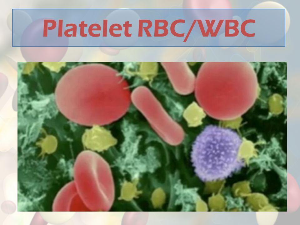 Platelet RBC/WBC