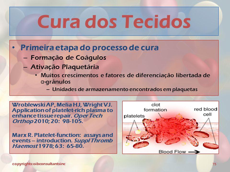 Cura dos Tecidos Primeira etapa do processo de cura
