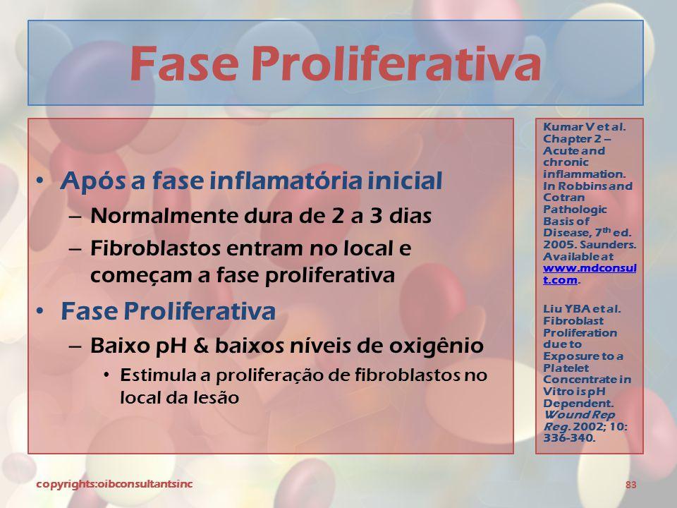Fase Proliferativa Após a fase inflamatória inicial Fase Proliferativa