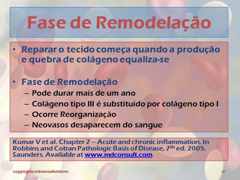 Fase de Remodelação Reparar o tecido começa quando a produção e quebra de colágeno equaliza-se. Fase de Remodelação.