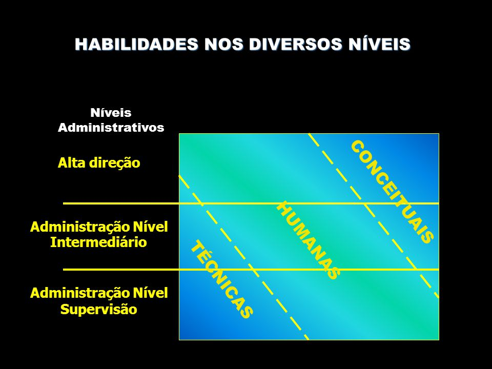 HABILIDADES NOS DIVERSOS NÍVEIS