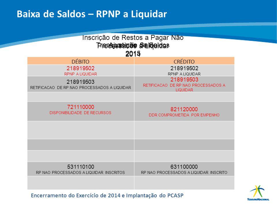 Baixa de Saldos – RPNP a Liquidar