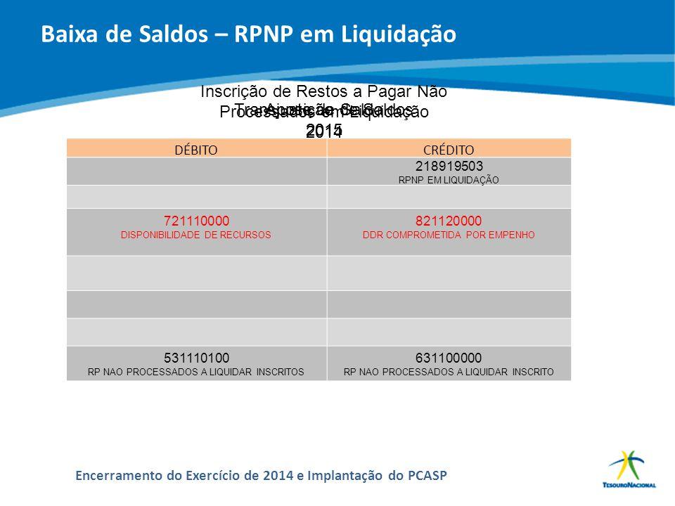 Baixa de Saldos – RPNP em Liquidação