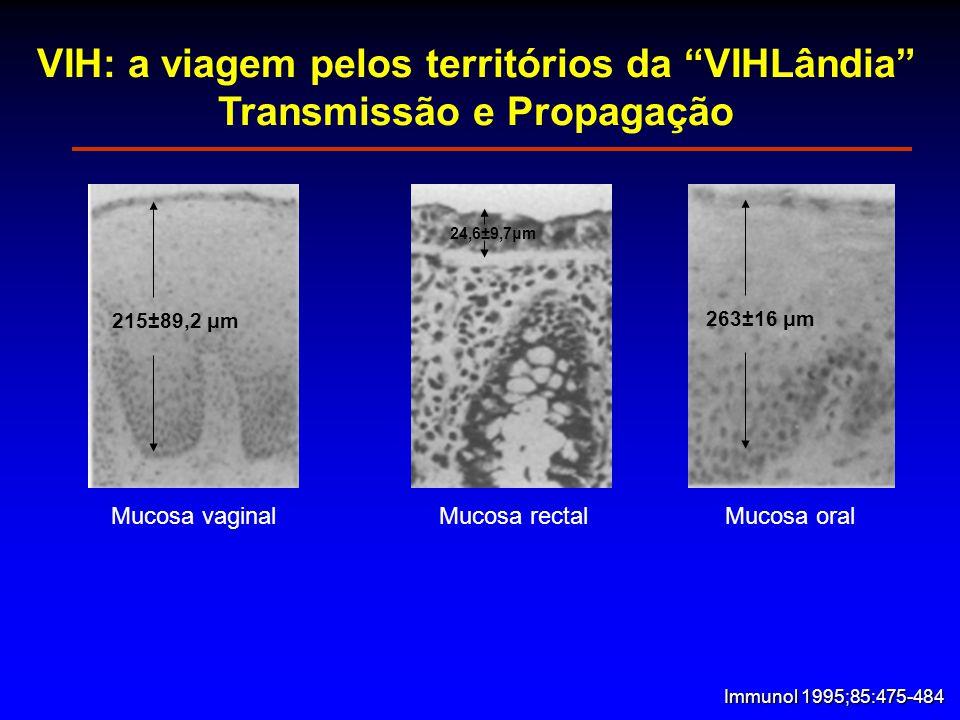 VIH: a viagem pelos territórios da VIHLândia Transmissão e Propagação