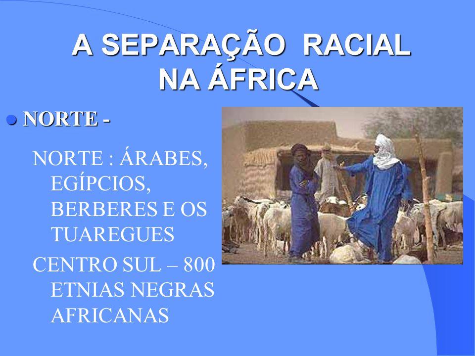 A SEPARAÇÃO RACIAL NA ÁFRICA