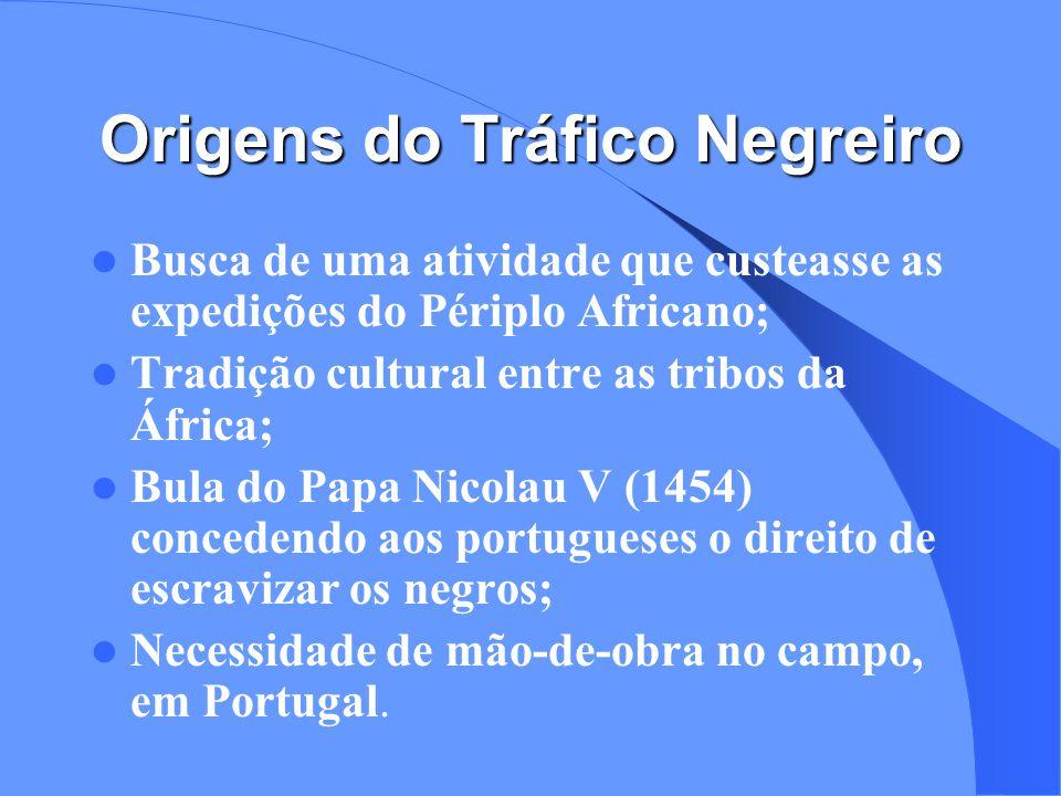 Origens do Tráfico Negreiro