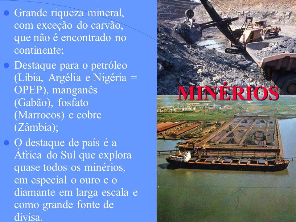 Grande riqueza mineral, com exceção do carvão, que não é encontrado no continente;