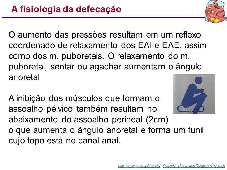 A fisiologia da defecação