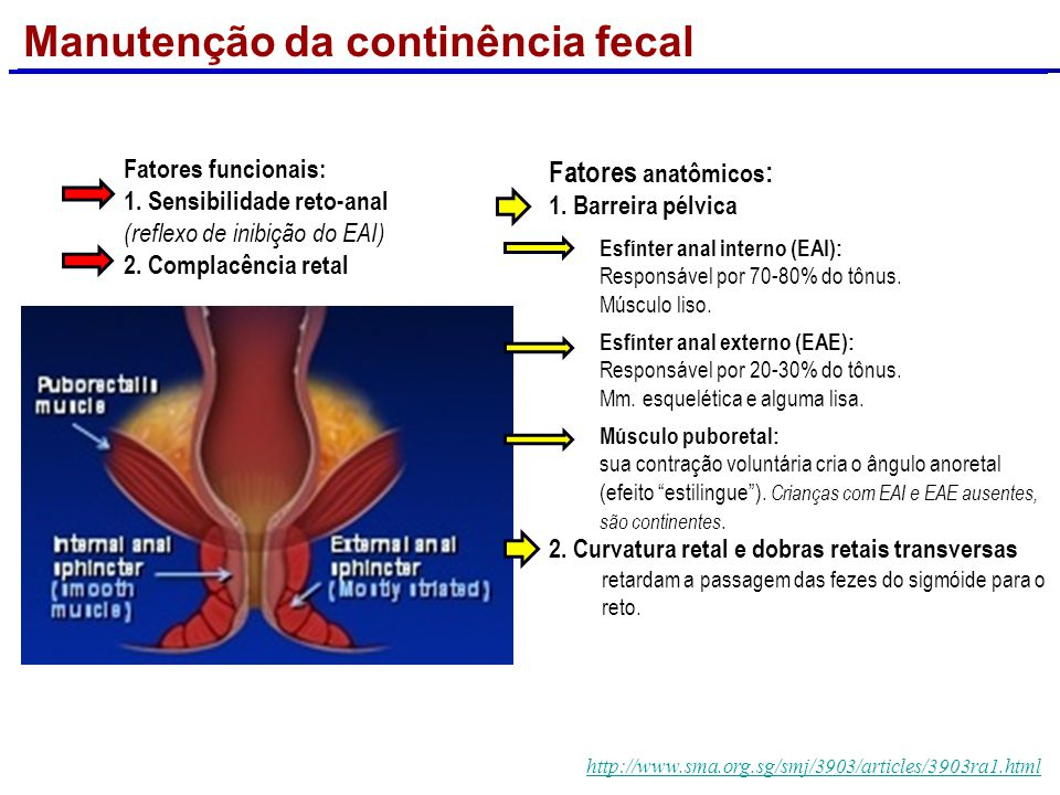 Manutenção da continência fecal