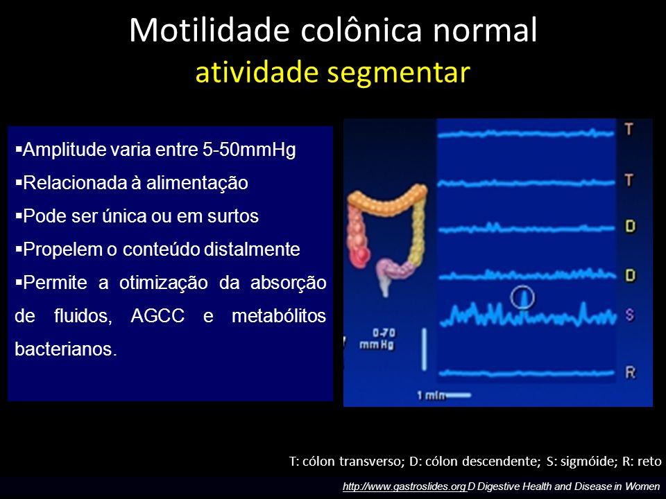 Motilidade colônica normal