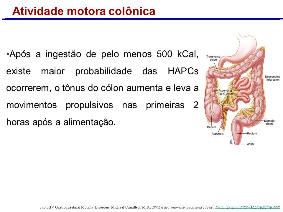 Atividade motora colônica